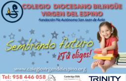 Colegio diocesano bilingüe Virgen del Espino